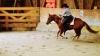 Reining: Grosser, schneller Zirkel